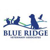 veterinary web design