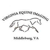 horse web design